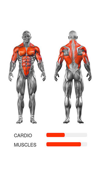 madbarz, Muscles